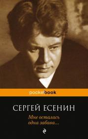 Сергей Есенин - шикарная обложка томика стихов