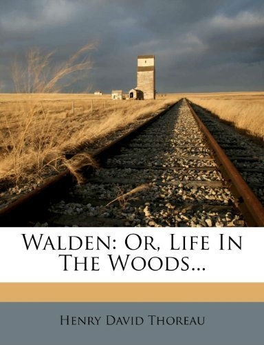 an analysis of hell of way to run railroad by maury kleins