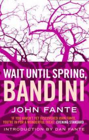 """""""Подожди до весны, Бандини"""" (американская обложка)"""