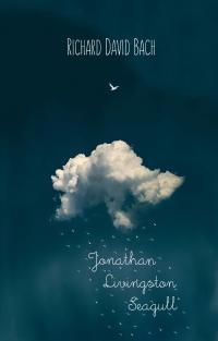 """Обложка Ричарда Баха, книга """"Чайка по имени Джонатан Ливингстон"""""""